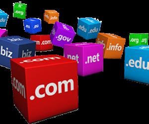 igualada-online-dominis-web